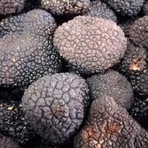 Petit coffret 4 tartinables truffe d'été